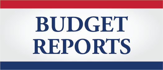 Budget Reports